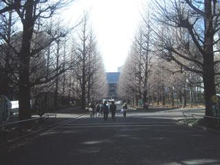 KIF_6260.jpg
