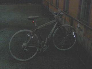 SN3G7806.JPG